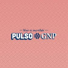 Pulso GNP (2020)